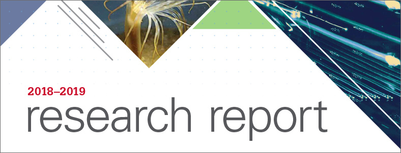 2019 Research Report