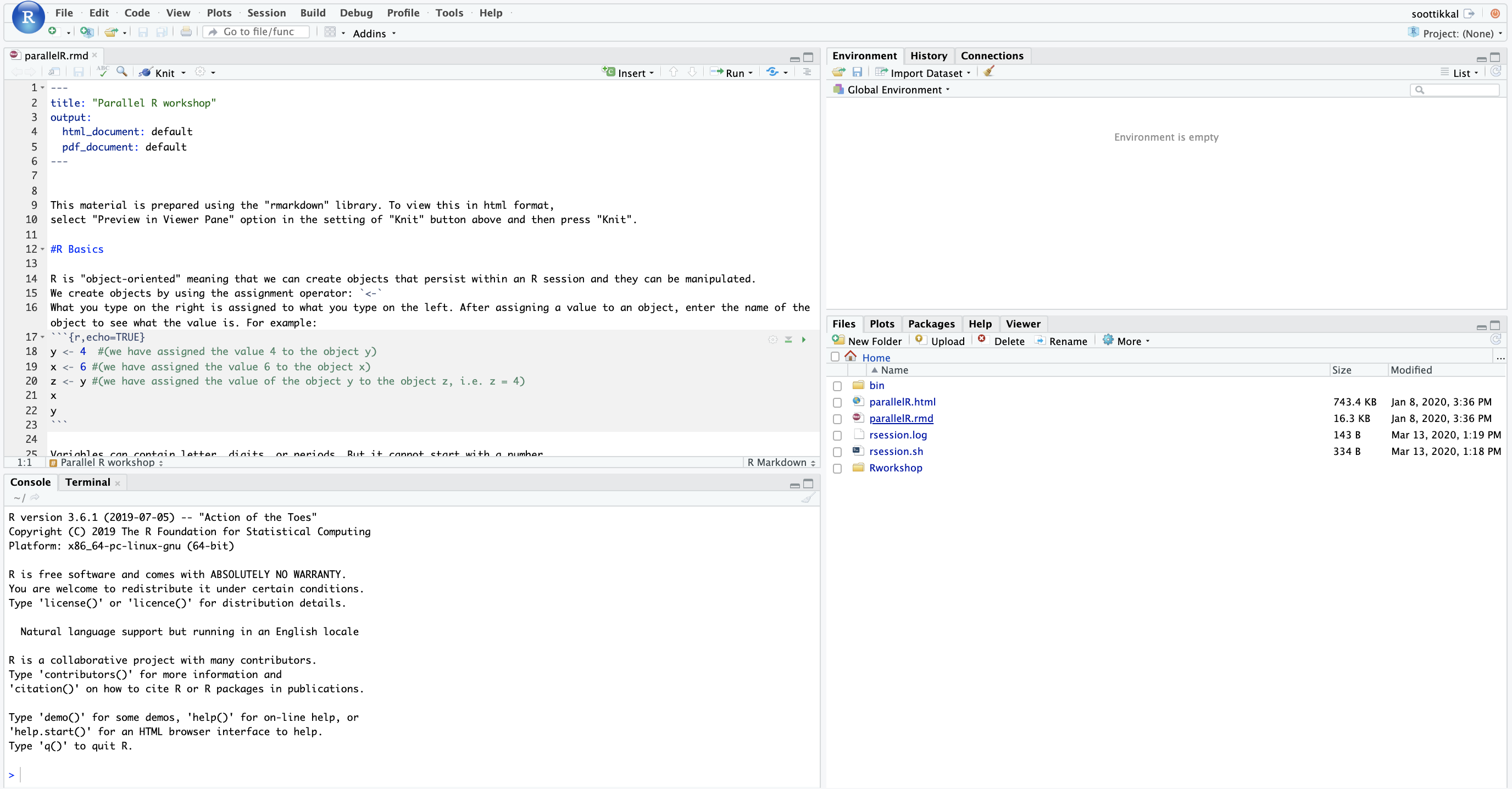 Image of an active RStudio session