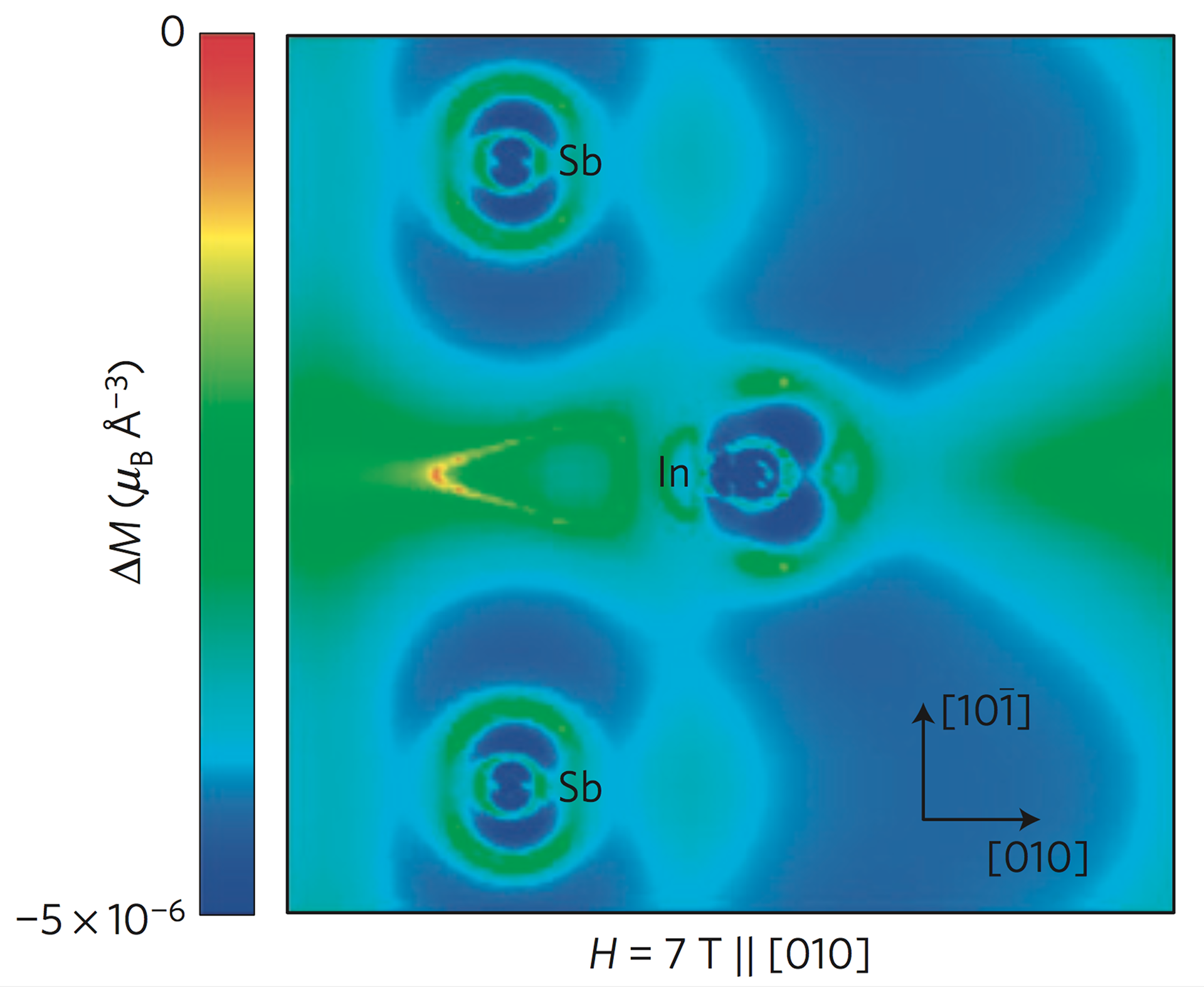 Phonon amplitude-dependent magnetic moments are induced on atoms