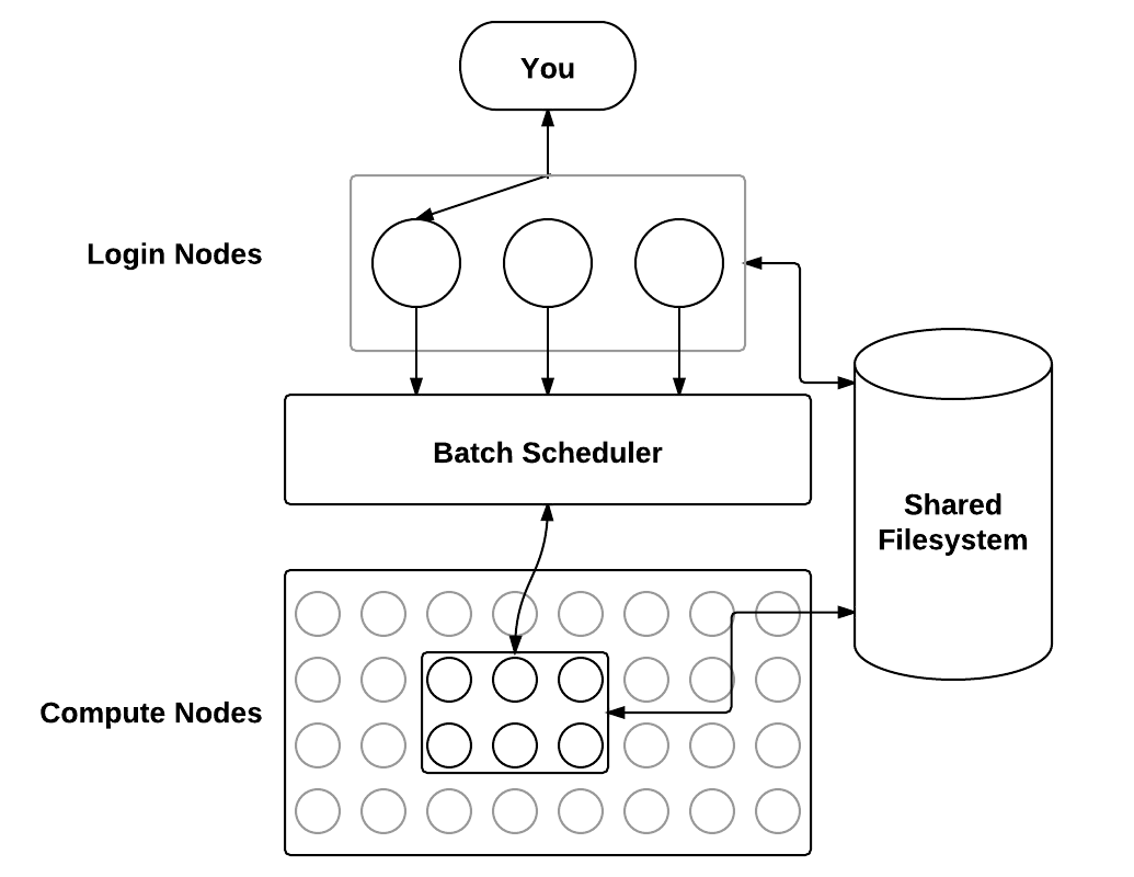 "Diagram: Several connected parts illustrating the layout of an OSC cluster. Users connect to one of a few ""login nodes"", which in turn connect to the ""batch system"", which runs jobs on a subset of the ""compute nodes"". The ""shared filesystem"" is connected to both the login nodes and the compute nodes."